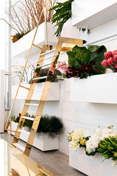 Tienda Blush Flowers